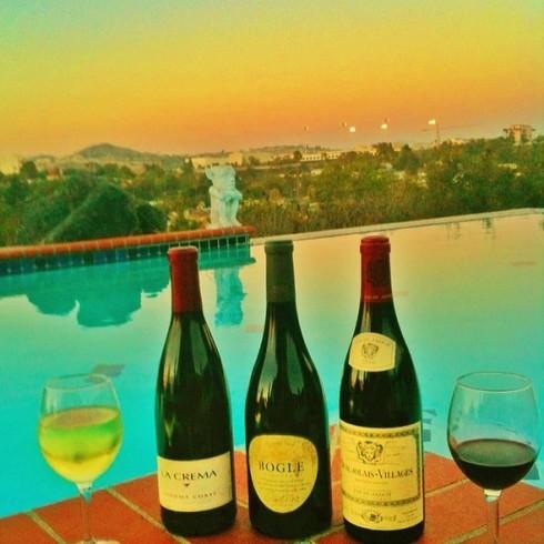 Como elegir un vino para una comida especial